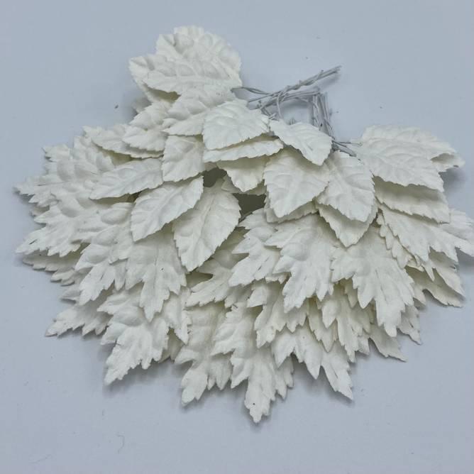 Bilde av Blader, hvit